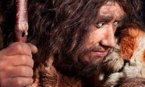 Portada - Una nueva investigación sugiere que la extinción de los neandertales fue anterior a lo que se creía hasta ahora. Fuente: procy-ab/Adobe Stock
