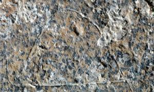 Portada-Detalle de uno de los grabados circulares hallados recientemente y que se han interpretado como cabañas de cazadores. (Fotografía: Manuel Vaquero/IPHES/SINC)