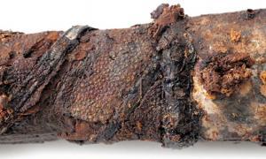 Portada - Decoración de la empuñadura de la espada excavada en una antigua tumba de Ebino, Prefectura de Miyazaki, considerada el más antiguo ejemplo de obra artesanal realizada con piel de raya hallado jamás en Asia Oriental. (Fotografía facilitada por el gobierno de la ciudad de Ebino).