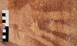 Portada-Esta diminuta mano, habitualmente considerada de un bebé o un niño muy pequeño, fue pintada en el interior de la silueta de una mano adulta sobre las paredes de roca de Wadi Sura II hace unos 8.000 años. Una reciente investigación sugiere que estas huellas tienen en realidad como modelo las extremidades de algún reptil. Fotografía: Emmanuelle Honoré