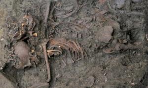 esqueleto de uno de los jóvenes soldados del siglo XVII enterrados en lo que ahora es el campus de la Universidad de Durham (Foto: Richard Annis).