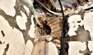 Portada - Fotografía de uno de los arcos encontrados en una panadería de Toledo y que podría pertenecer a un pequeño oratorio de una mezquita del Siglo X-XI. (Fotografía: Cadena SER/Ayuntamiento de Toledo).