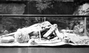 Portada - Aspecto de la momia denominada «Fawn Hoof», descubierta en Mammoth Cave, Mammoth Cave National Park, Kentucky, Estados Unidos. (Fotografía: Código Oculto)