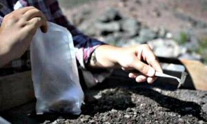 Portada - Uno de los expertos extrayendo parte de los restos encontrados en el yacimiento arqueológico argentino. (Fotografía: La Gran Época/Jorge Darío Fernández/Universidad Nacional de Cuyo)