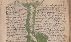Portada - Página del manuscrito Voynich, misterioso texto medieval que hasta el día de hoy no ha podido ser descifrado. (Public Domain)