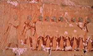 Portada - Relieve de la expedición de Hatshepsut en el templo de Hatshepsut, Deir el-Bahari, Luxor, Egipto. (Bernard Dupont/Flickr)