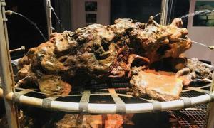 Portada - Restos óseos recuperados del barco pirata Whydah Gally dentro de una masa de piedra y arena endurecida. Crédito: Museo Pirata del Whydah