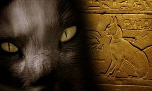 Portada - Derecha, sarcófago del gato del príncipe Tutmosis. El nombre de este gato era Ta-miu. (CC BY 2.0), Izquierda: '¡Cuidado con el gato!' (Flickr/CC BY 2.0).