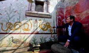 Portada - Massimo Osanna en el santuario recientemente descubierto en Pompeya. Fuente: Parque Arqueológico de Pompeya