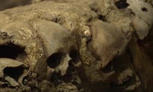 Portada - Cráneos de la monumental torre de calaveras hallada recientemente cerca del Templo Mayor, Ciudad de México (Imagen: Youtube)