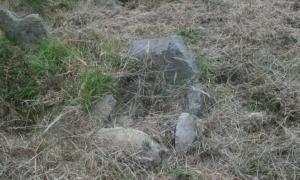 Portada-Pequeña tumba en el Fuerte de los Niños de Tullycrine, en Irlanda (Janet/Blogging from the Bog)