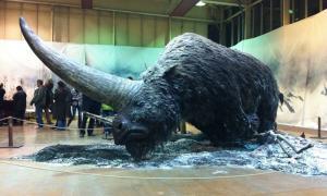 Portada - Reconstrucción del posible aspecto del Unicornio Siberiano. Fotografía: Hoy