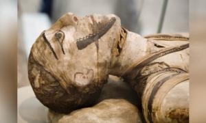 momia egipcia. Crédito: markrhhiggins/ Adobe Stock
