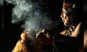 se han encontrado sustancias psicoactivas utilizadas por los chamanes en Bolivia Fuente: Ammit / Adobe Stock