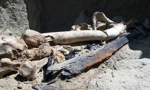 Los huesos y la espada de la tumba de la primera guerrera conocida de los antiguos Kangyuy, pueblo de las estepas de Kazajistán. Credit: MailOnline