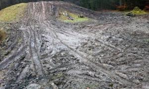 El túmulo antivandálico, de la Edad de Bronce de Gran Bretaña, agitado con huellas de neumáticos en Gales, Reino Unido. Fuente: Gwent Outdoor Centres