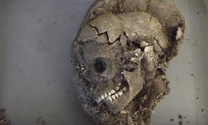 El cráneo del niño después de la excavación. Los científicos esperan determinar muchas cosas acerca de la persona sepultada, como su dieta, el lugar donde vivió, enfermedades que padeció, causa y año de su muerte.