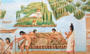 Representación de un artista de las chinampas. Fuente de la foto