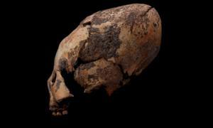 Uno de los cráneos de formas extrañas descubiertos en el noreste de China. Fuente: Q Wang / Uso Justo.