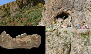 Baishiya Karst Cave en Xiahe, China. Fuente: (Dongju Zhang, Universidad de Lanzhou) Insertar: La mandíbula Xiahe, representada únicamente por su mitad derecha, fue encontrada en 1980 en la cueva de Karst Baishiya. (Dongju Zhang, Universidad de Lanzhou)