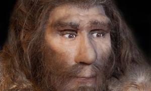 Hace unos 30.000 años, los últimos neandertales restantes en España se extinguieron (procy_ab/ Adobe)