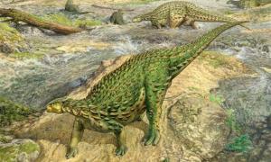reconstrucción de un Scelidosaurus vivo, el primer esqueleto de dinosaurio completo jamás descubierto.