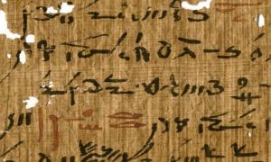 muestra de escritura egipcia de un tratado médico (inv. P. Carlsberg 930) perteneciente a la biblioteca del templo de Tebtunis con encabezados marcados en tinta roja.