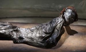 El hombre de Grauballe es un cuerpo de pantano que fue descubierto en 1952 de un pantano de turba cerca del pueblo de Grauballe en Jutlandia, Dinamarca.