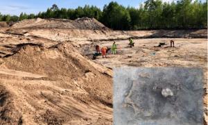 Excavación del sitio en Ljungaviken, Suecia.