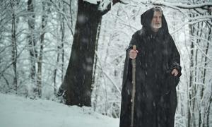 Un peregrine en la nieve. (captblack76 / Adobe Stock)