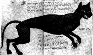 Agnes Bowker (nacida en 1540) fue una empleada doméstica británica y supuesta madre de un gato en 1569. Su juicio causó sensación en toda Inglaterra. La foto original era de Anthony Anderson y el gato era rojo. (Anthony Anderson en 1569 / Dominio público)