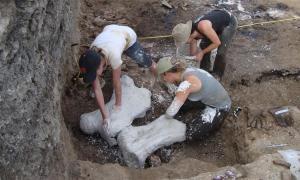 Los estudiantes hacen envolturas protectoras de yeso para huesos de perezosos gigantes conservados en asfalto en la localidad de alquitrán de Tanque Loma en el suroeste de Ecuador. (Martin Tomasz / La Brea Tar Pits)