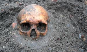 Un cráneo humano de 210.000 años encontrado en Grecia sugiere que nuestra especie salió de África mucho antes de lo que se pensaba. Fuente: esben468635/ Adobe Stock