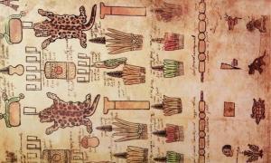 Lámina 25 de la Matrícula de Tributos correspondiente a la lámina 47 del Códice Mendoza. Se muestran pieles de ocelote, plumas finas, fardos de cacao, entre otros. (imagen proporcionada por el autor)