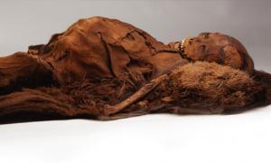 Momia inuit adulta que fue escaneada con tomografía computarizada. Fuente: Cortesía del Museo de Arqueología y Etnología de Peabody, Universidad de Harvard, PM 29-10-10 / 61570.0.