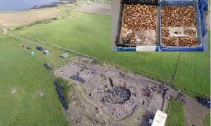 El trabajo en el sitio arqueológico de Cairns en Orkney comenzó en 2006. Ahora los arqueólogos han desenterrado los restos de una fiesta de la Edad del Hierro que incluye miles de conchas.