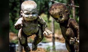 Al recolectar muñecas para la Isla de las Muñecas, Santana Barrera no hizo ningún esfuerzo por limpiarlas o arreglarlas; Una vez obtenido, los colgaría en los árboles de la isla.
