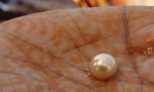 la perla más antigua del mundo se descubrió en la isla de Marawah, Emiratos Árabes Unidos. Fuente: Arundhati Chaudhuri / CC BY-SA 2.0.