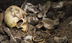 Los expertos han estudiado los restos óseos de cinco cuerpos excavados en Irlanda y analizado los restos para detectar cepas de lepra. Fuente: Suthiporn / Adobe Stock.