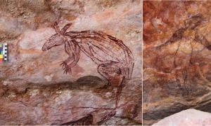un nuevo artículo presenta 570 ejemplos de arte rupestre de Maliwawa en refugios rocosos en el oeste de Tierra Arnhem en el Territorio del Norte de Australia. Esta imagen muestra una representación de arte rupestre de un macrópodo de Maliwawa encontrado en la finca del clan Namunidjbuk de Wellington Range
