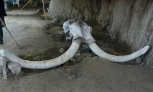 Las trampas gigantescas se encontraron en Tultepec, México. Fuente: Edith Camacho, INAH
