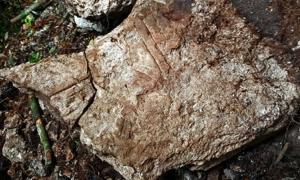 piedra inscrita de un monumento en Witzna con abrasador fechado en 697. Fuente: Francisco Estrada-Belli / Nature Magazine