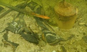 Los restos del soldado medieval se encontraron en el lago Asveja, Lituania.
