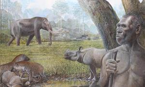 reconstrucción artística de una sabana en el sudeste asiático del Pleistoceno medio. En primer plano se representan Homo erectus, stegodon, hienas y rinocerontes asiáticos. El búfalo de agua se puede ver en el borde de un bosque ribereño en el fondo.