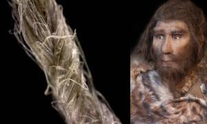 Primer plano del cordaje moderno de lino que muestra la construcción de fibra retorcida. (S. Deryck) y una representación moderna de un neandertal. (procy_ab / Adobe Stock) El complejo proceso de hacer hilo es más evidencia de la inteligencia neandertal.