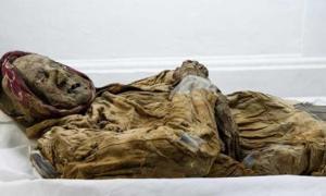 La momia de guano.