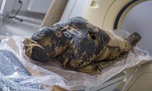 Las radiografías y las tomografías computarizadas del cuerpo momificado muestran que la mujer murió cuando tenía entre 20 y 30 años. (O. Leydo)