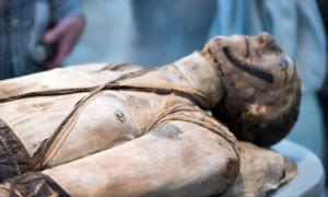 momia egipcia. Crédito: Andrea Izzotti/ Adobe Stock