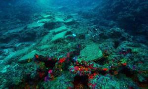 El naufragio de 3.600 años encontrado en el mar Egeo.