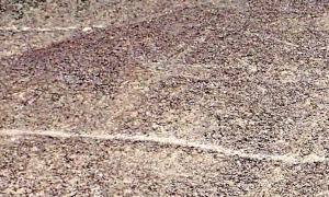 Una foto de un geoglifo antiguo en forma de llama encontrado por investigadores de la Universidad de Yamagata en la meseta de Nazca en Perú.